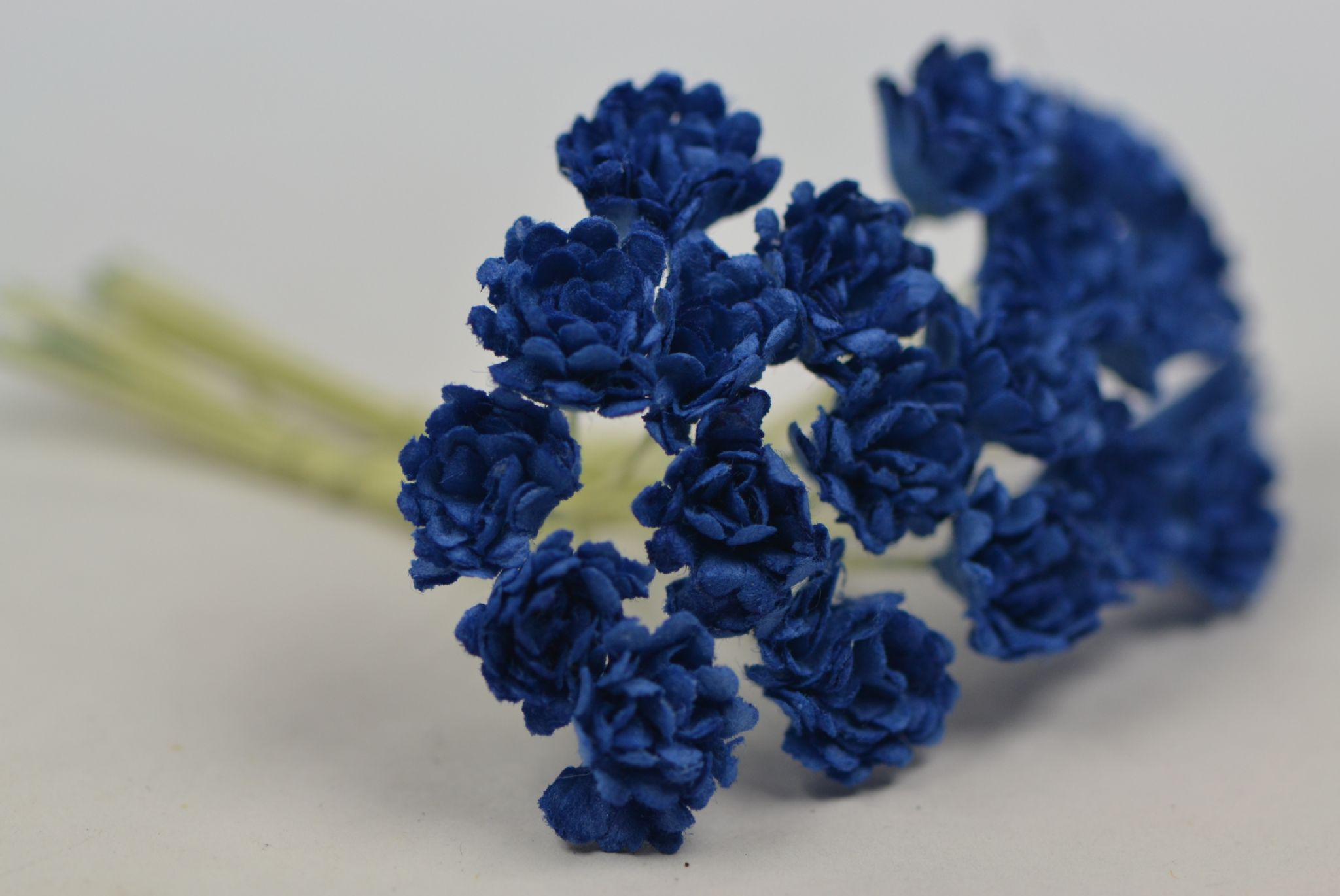 Dark Royal Blue Gypsophila Forget Me Not Mulberry Paper